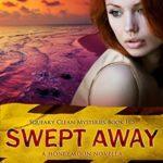 [PDF] [EPUB] Swept Away (Squeaky Clean Mysteries #11.5) Download