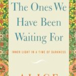[PDF] [EPUB] We Are the Ones We Have Been Waiting for: Inner Light in a Time of Darkness Download