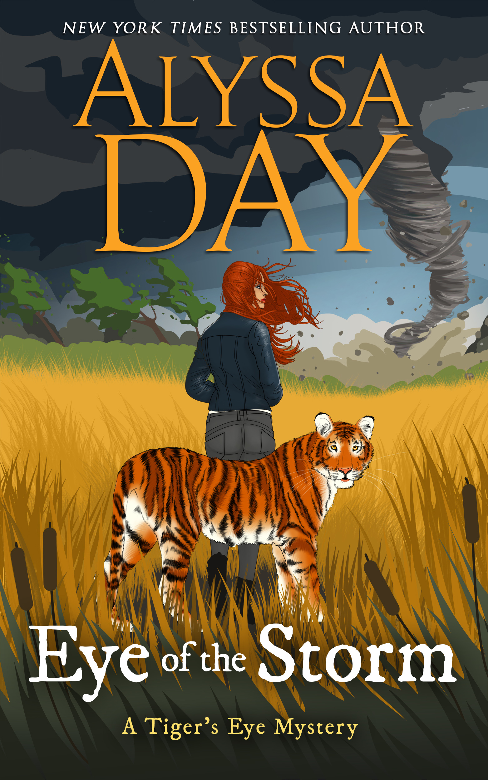 [PDF] [EPUB] Eye of the Storm (Tiger's Eye Mystery #5) Download by Alyssa Day