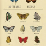 [PDF] [EPUB] Butterfly People: An American Encounter with the Beauty of the World Download