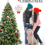 [PDF] [EPUB] One Complicated Christmas (Christmas Mountain Clean Romance #5) Download