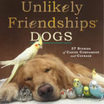 [PDF] [EPUB] Unlikely Friendships: Dogs: 37 Stories of Canine Compassion and Courage Download
