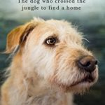 [PDF] [EPUB] Arthur: The dog who crossed the jungle to find a home Download