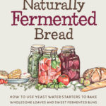 [PDF] [EPUB] Naturally Fermented Bread: How To Use Botanical Starters Cultivated from Fruits, Flowers, Plants, and Vegetables To Bake Wholesome Loaves, Buns, and Pastries Download