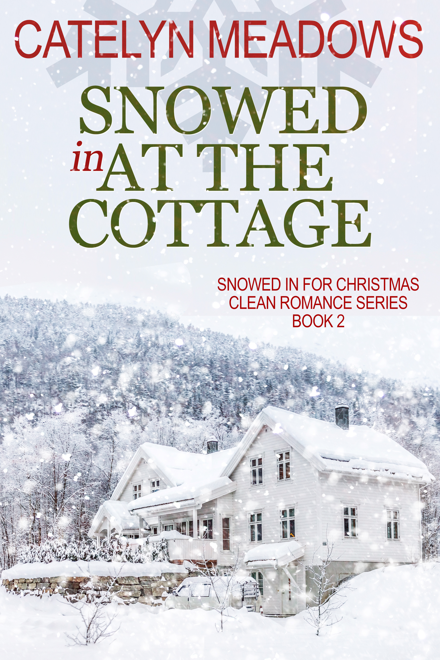 [PDF] [EPUB] Snowed In at the Cottage Download by Catelyn Meadows