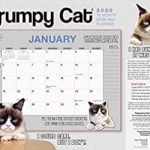 [PDF] [EPUB] 2020 Grumpy Cat 18-Month Desk Pad Planner: By Sellers Publishing Download