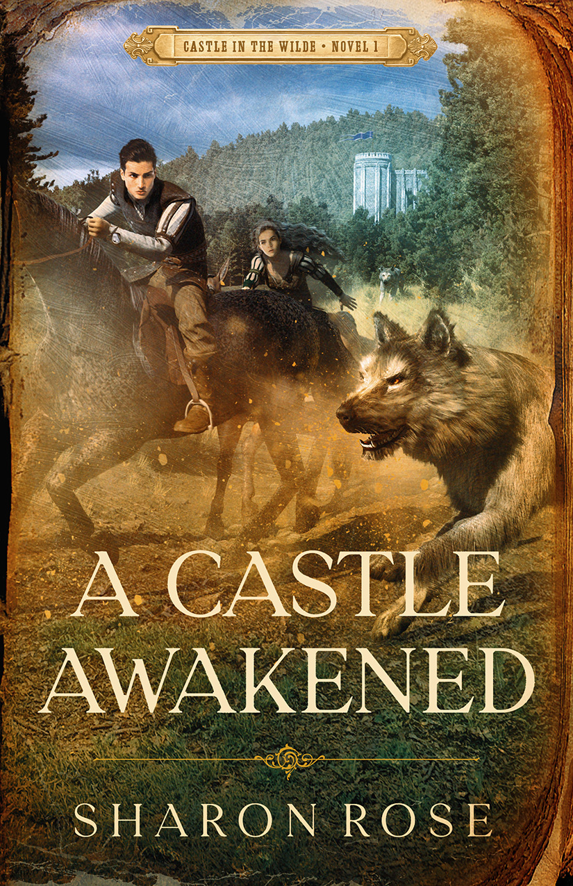 [PDF] [EPUB] A Castle Awakened (Castle in the Wilde #1) Download by Sharon Rose