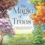 [PDF] [EPUB] The Magic of Trees: A Guide to Their Sacred Wisdom and Metaphysical Properties Download