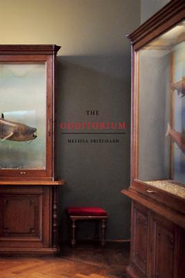 [PDF] [EPUB] The Odditorium: Stories Download by Melissa Pritchard